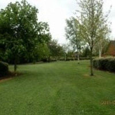 Winfield Park